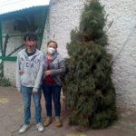 Recolectan árboles de navidad a través de módulo habilitado en zoológico municipal