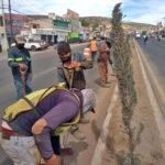 Gobierno municipal avanza en el mantenimiento y mejora de imagen de 12 bulevares