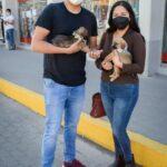 """Siete canes con nuevo hogar en la campaña """"Adopta un amigo"""""""